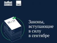 Какие законы вступают в России в сентябре 2019 года? Объясняем на карточках