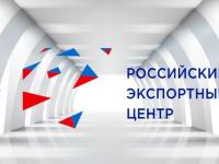 Гендиректор РЭЦ Андрей Слепнев рассказал о поддержке отечественного бизнеса и онлайн-торговле
