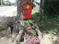 Приглянувшийся изданию «53 новости» домик на дереве стал в Хвойной «Открытием года»