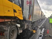 В ДТП на территории Чудовского района попали сразу четыре грузовика