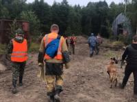 В лесах Новгородской области четвертый день будут искать пожилую женщину