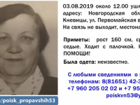 В лесу Демянского района третью неделю ищут 85-летнюю пенсионерку