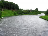 В Новгородской области ищут подростка, прыгнувшего в реку с моста
