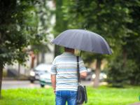 В Новгородской области целый день будут дожди и ветер