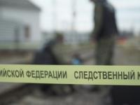 В Новгородской области женщина с 15-летней дочерью попали под поезд