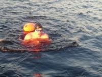 Великий Новгород впервые примет «Кубок Чемпионов» по плаванию на открытой воде