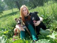 Верный друг: когда одной собаки мало...