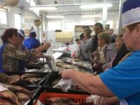 28 сентября в Великом Новгороде вновь пройдет акция «Доступная рыба»