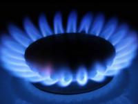 Губернатор: «В краткосрочной перспективе необходимо газифицировать Пестовский район»