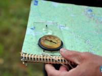 Десятки людей теряются в лесах Новгородской области