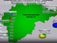 Обработано 99,81% протоколов на довыборах в Госдуму от Новгородской области