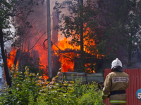 В Мошенском районе на пожаре погиб человек