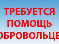 В Великом Новгороде и Новгородском районе ищут двоих мужчин