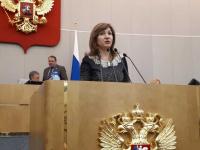 Депутат Государственной Думы высказалась в поддержку ФК «Электрон»