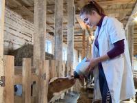 Фермер из Шимского района добивается результатов с помощью… музыки