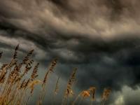 На 12 октября в Великом Новгороде прогнозируют шторм