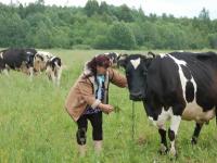 Новгородская область отмечает День работника сельского хозяйства и перерабатывающей промышленности