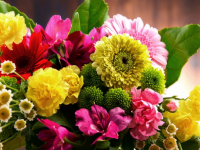 Самая праздничная неделя октября. Кого поздравят новгородцы в эти дни?