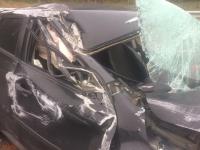 Сон водителя на трассе М-11 в Окуловском районе привел к травмам детей