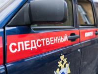 В Новгородской области женщина осуждена за попытку убить ребенка
