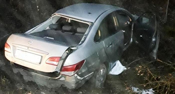 В Боровичском районе погибла женщина после столкновения авто с деревом