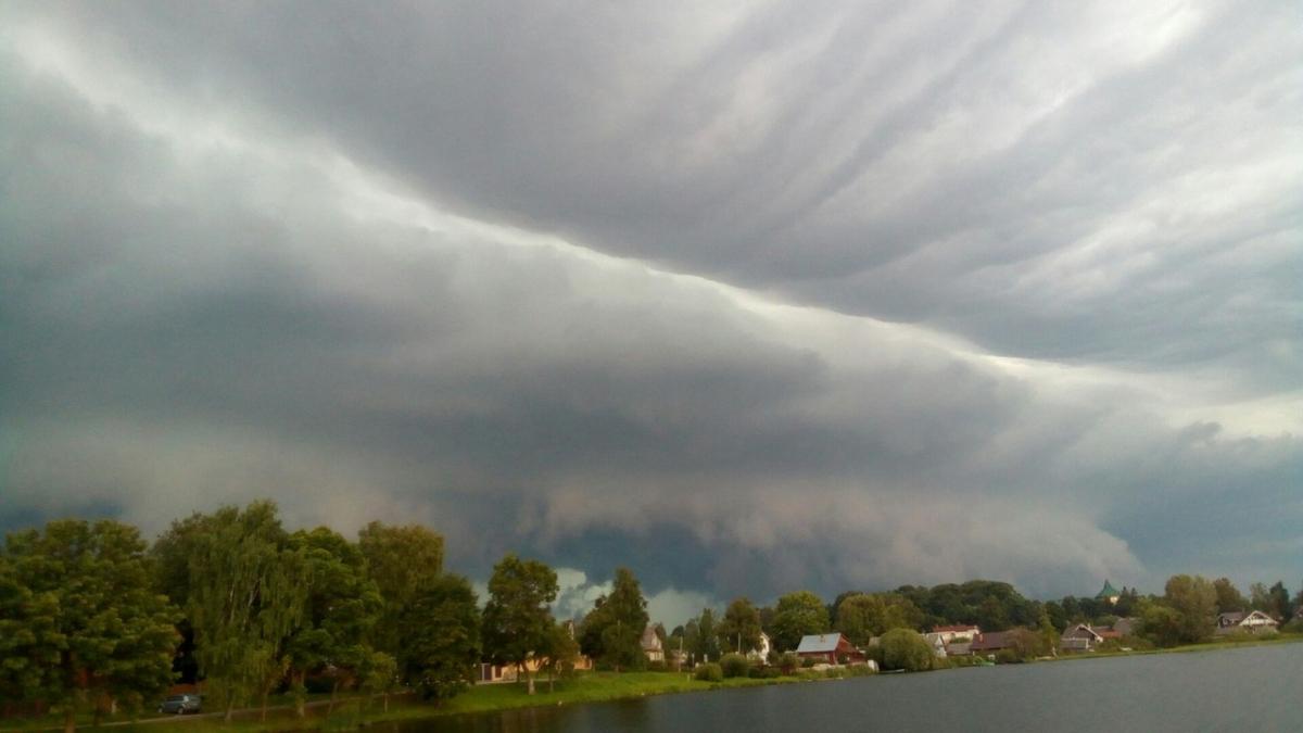 В Новгородской области более суток будет дуть предштормовой ветер